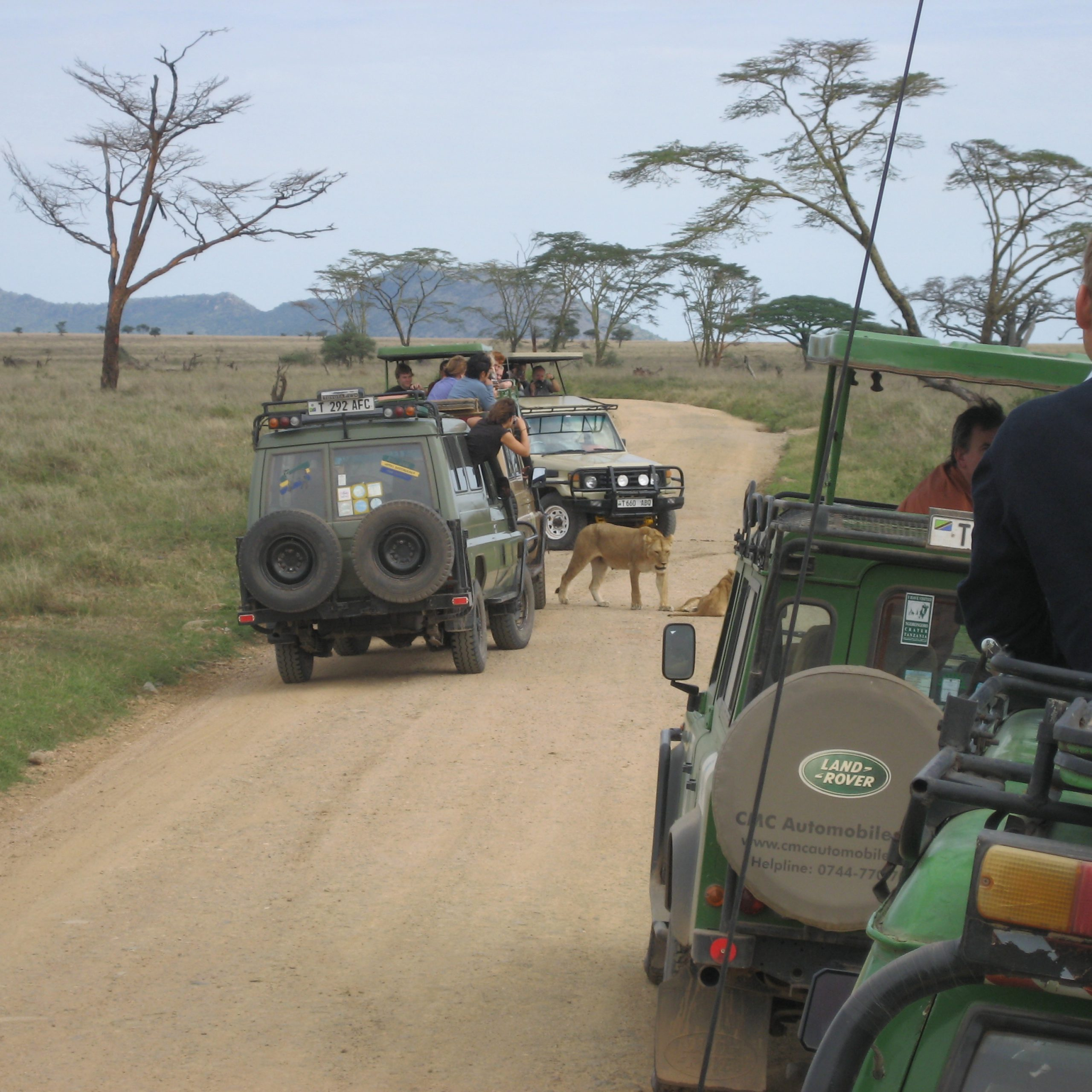 Day 3: Karatu to Serengeti National Park