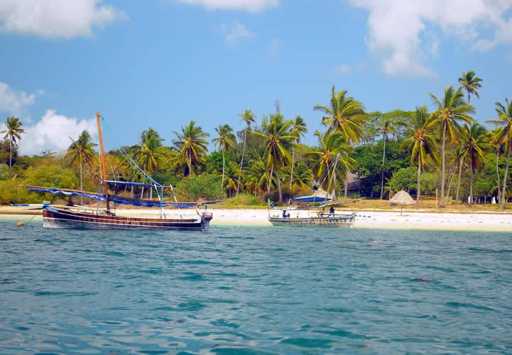 Day 3: Mafia Island Dar es Salaam then Zanzibar