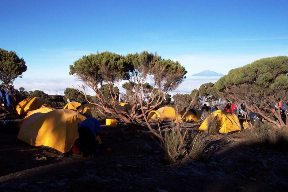 Day 2: Machame Gate (1490m) - Machame camp (2980m)