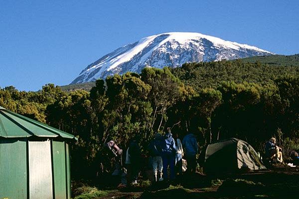 Day 7: Mweka camp (3100m) - Mweka Gate (1980m)-Moshi Town