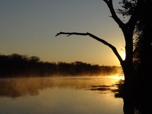 Day 3 & 4: The Kruger National Park, Skukuza Camp