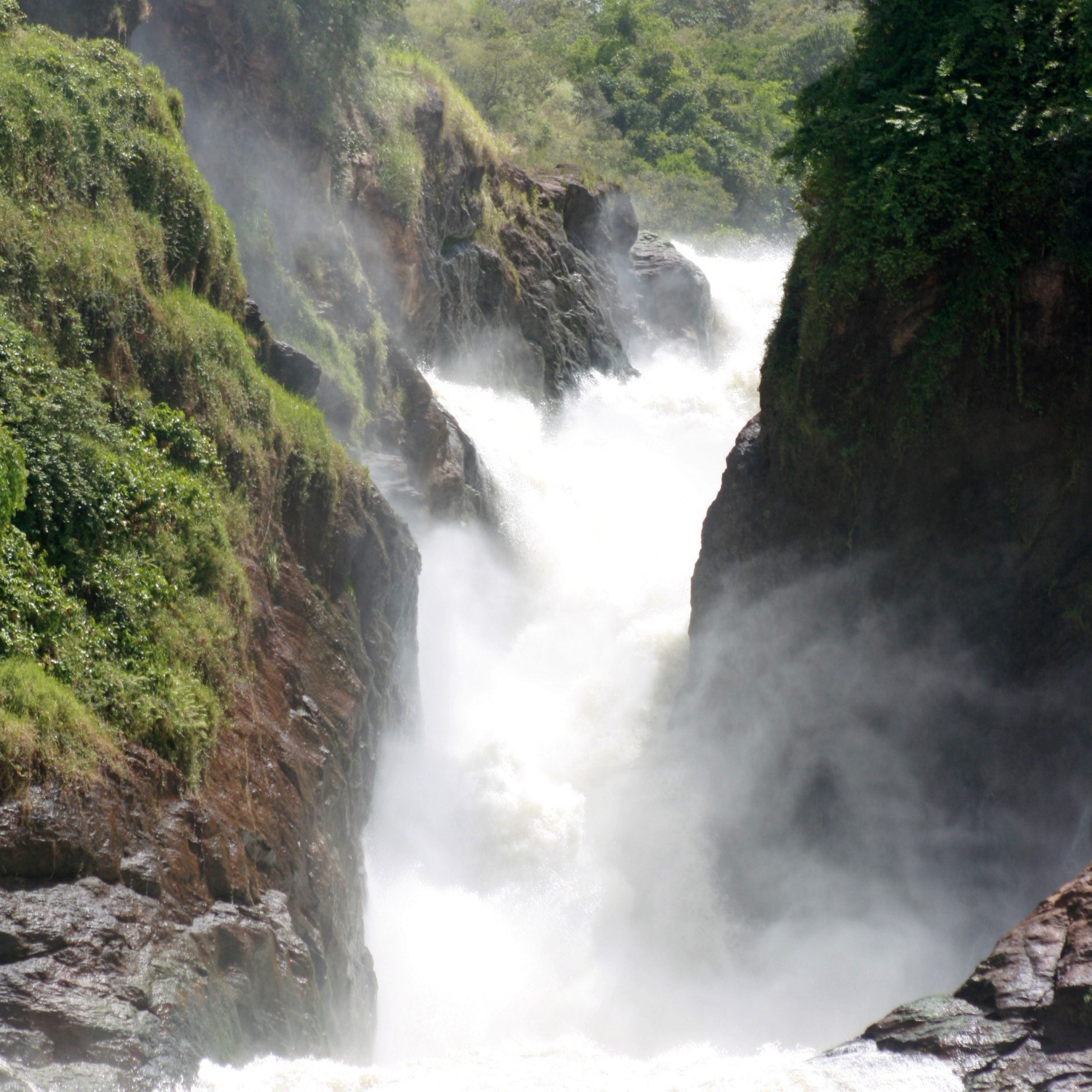 Experience the Beauty of Murchison Falls national Park