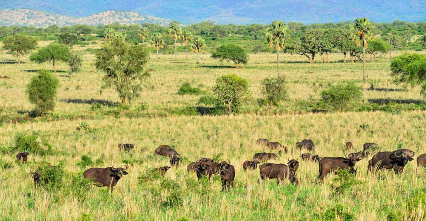 DAY 3: AT KIDEPO VALLEY NATIONAL PARK